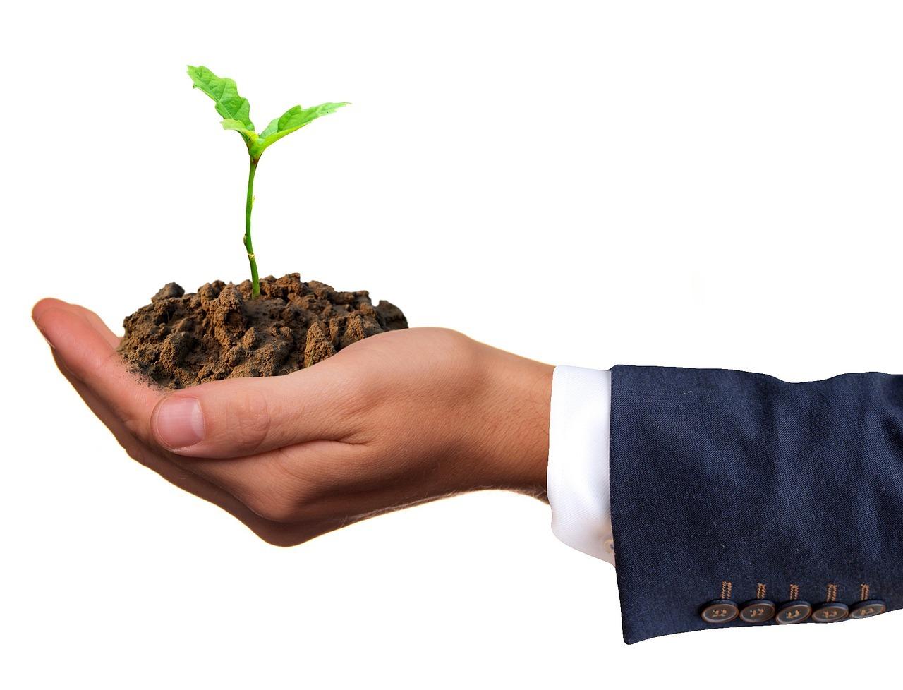 Durch die Aktionstage soll das Thema Nachhaltigkeit mehr öffentliche Aufmerksamkeit erhalten.
