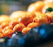 Fairtrade Bio Ratgeber, Mandarinen, Obst im Supermarkt