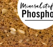 Phosphor steckt in eiweißreichen Lebensmitteln wie Vollkornbrot