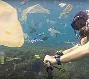 Video: Plastikmüll im Meer vor Bali