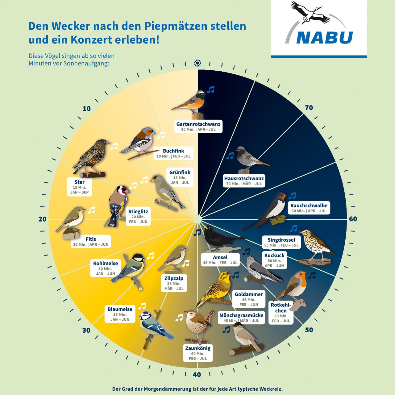 Die Nabu-Vogeluhr