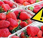 Erdbeeren Öko-Test Pestizide