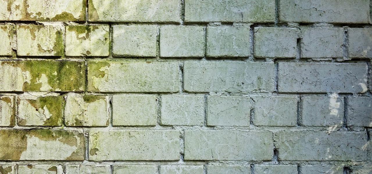 Gut bekannt Feuchte Wände: Vorsicht bei diesen Anzeichen - Utopia.de UI32