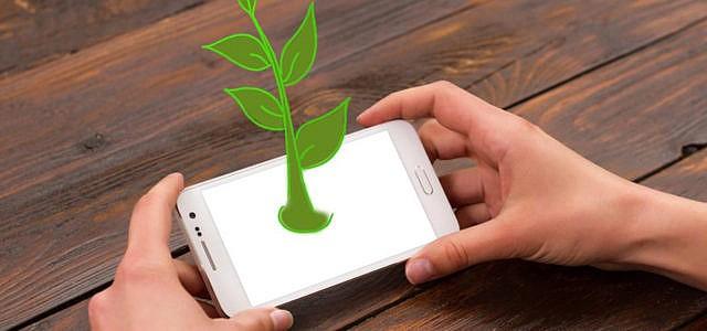 Die besten nachhaltigen grünen Apps