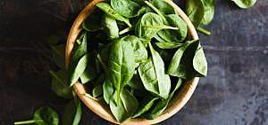 Spinat roh essen – gesund oder bedenklich?