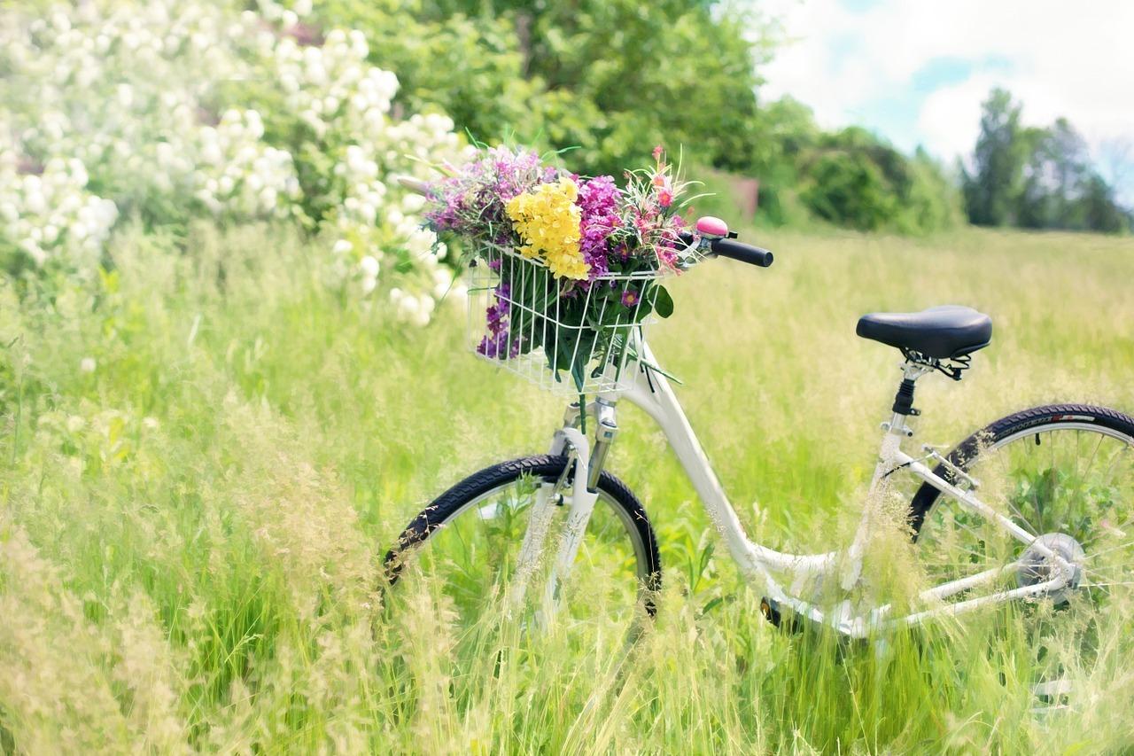Wann immer es geht, fahre lieber mit dem Rad.