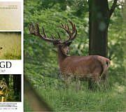 Wem gehört die Jagd Dokumentarfilm