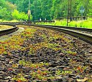 Deutsche Bahn Gleise Glyphosat