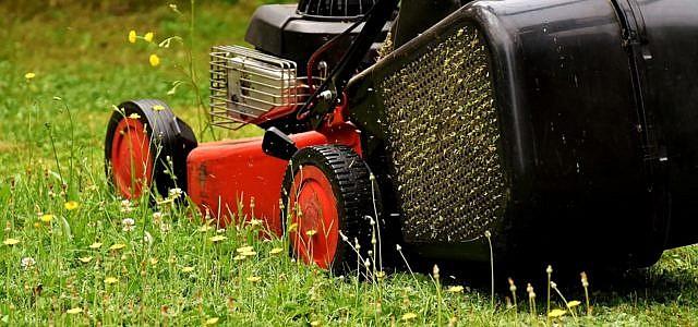 Rasen Mahen Tipps Und Welche Fehler Du Vermeiden Solltest Utopia De
