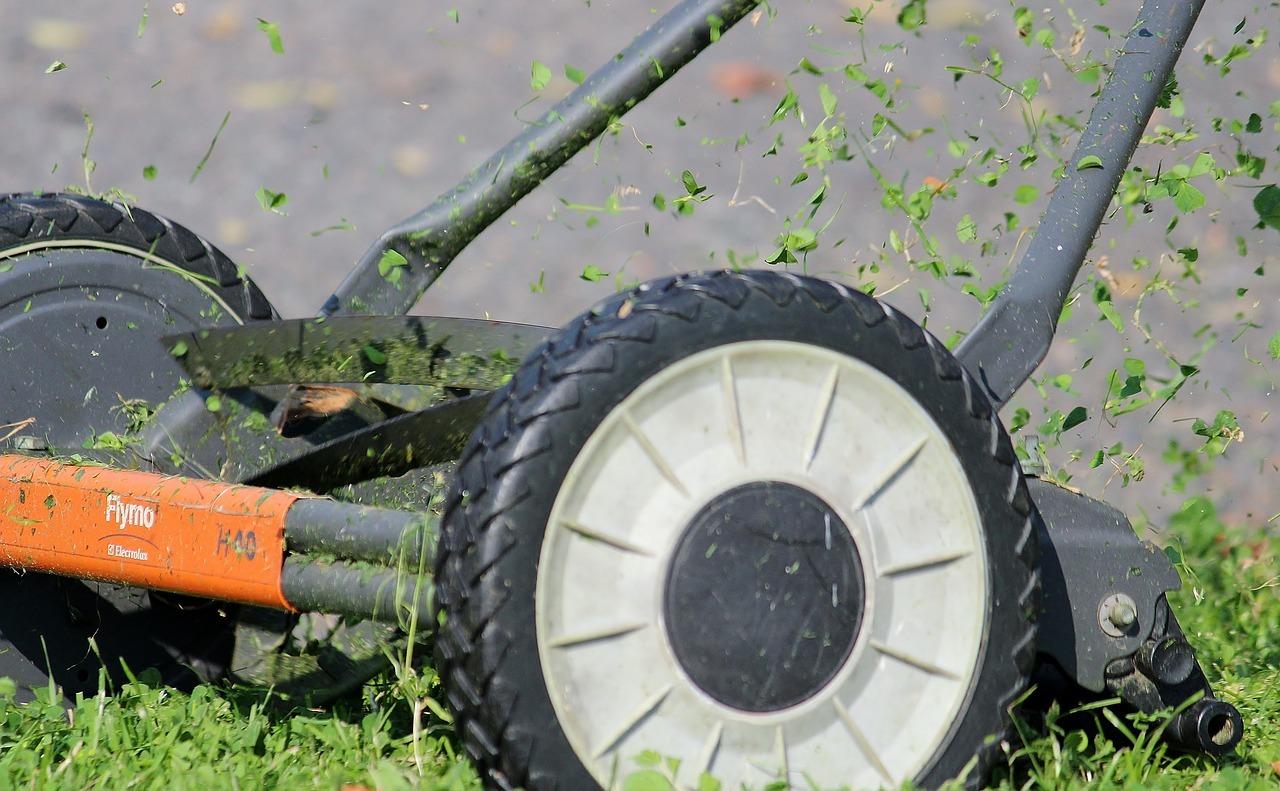 Spindelmäher arbeiten ohne Strom oder Benzin und sorgen für einen sauberen Schnitt.