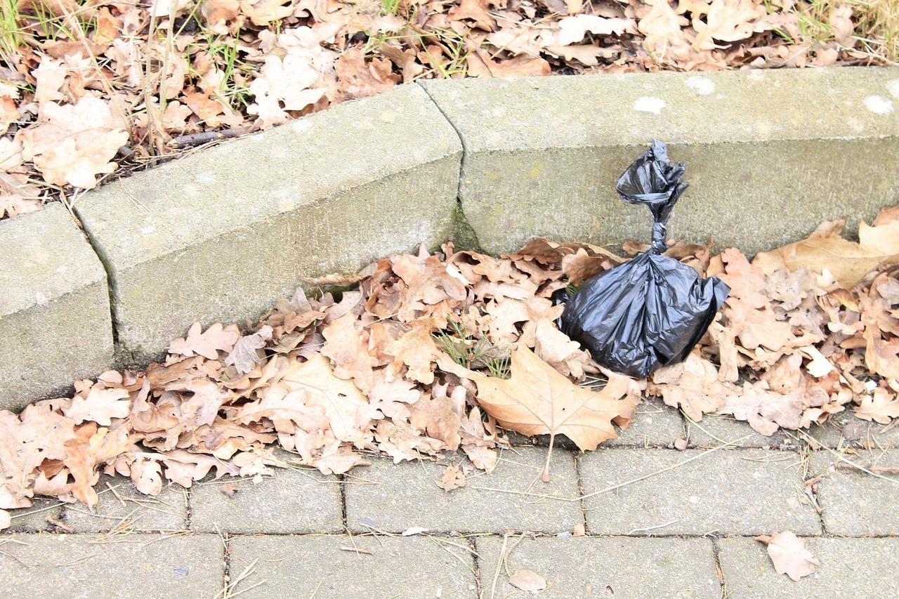 Hundekotbeutel landen oft auf der Straße und nicht im Müll.