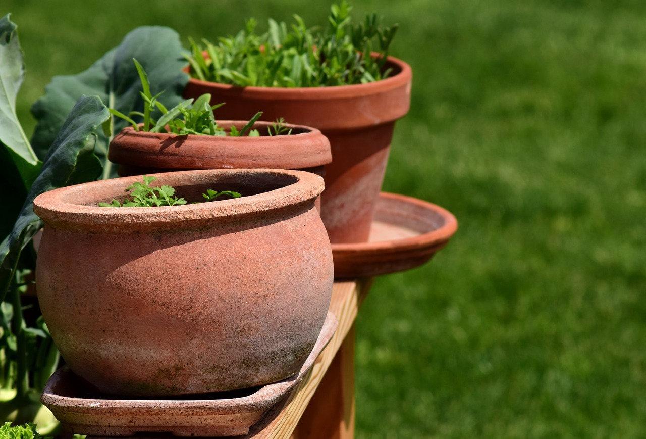 Kräuterkübel im Garten