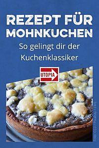 Mohnkuchen-Rezept: Eine einfache Anleitung für den Kuchenklassiker