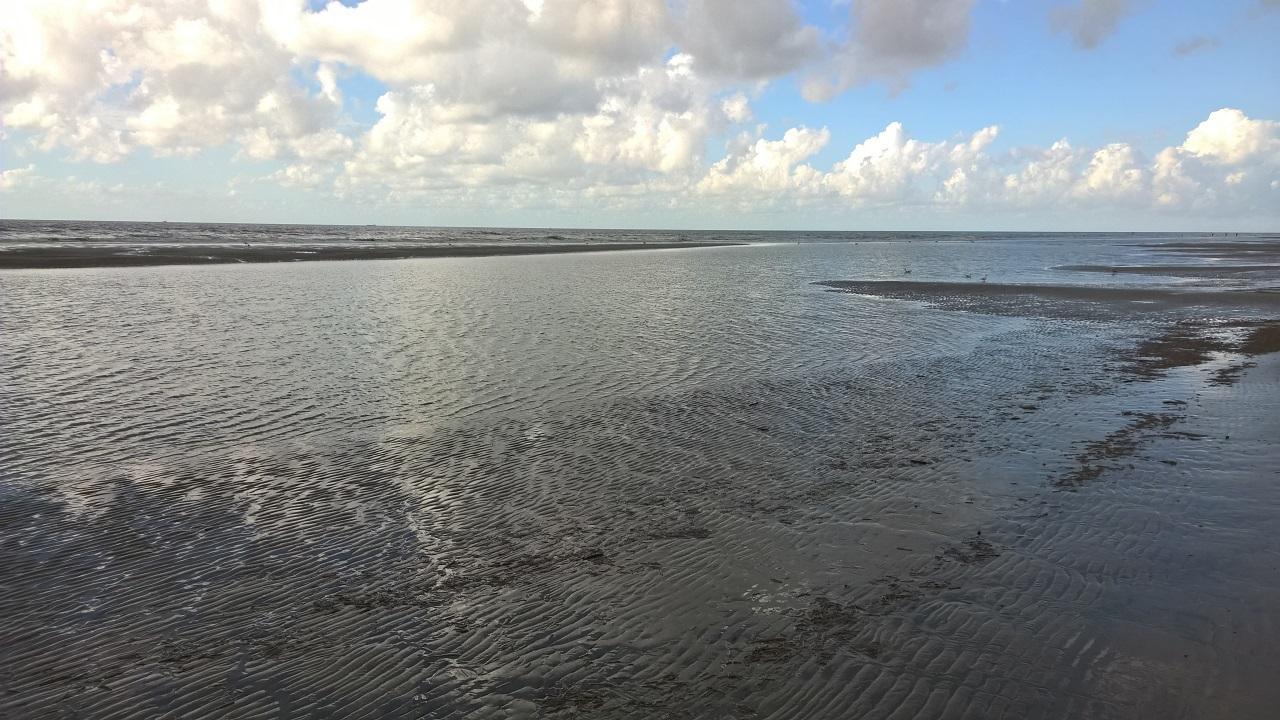 Nordsee in Dänemark: Raue Nord- und Ostseeküste