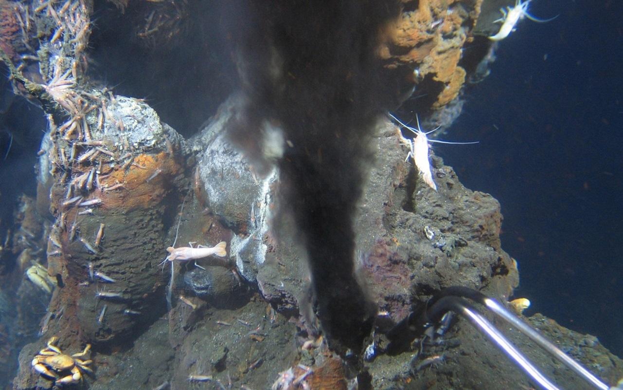 Tiefseebergbau: Die Gier der Menschheit hat den Meeresgrund erreicht
