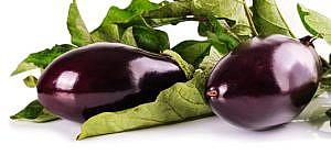 aubergine roh essen