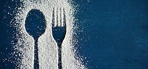 Dokumentation Ernährung