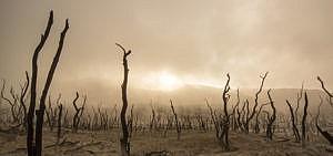 Heißzeit: Forscher warnen davor