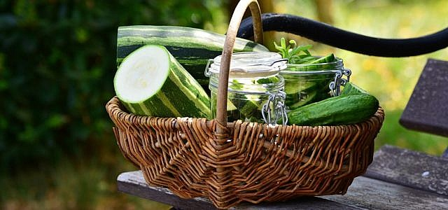 Zucchini Kuchen Ein Rezept Ohne Nusse Utopia De