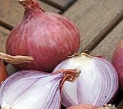 Zwiebelmarmelade wird aus roten Zwiebeln hergestellt.