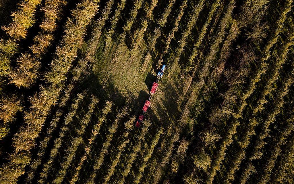 Bauernfamilien klagen mit Greenpeace gegen die Bundesregierung wegen Klimawandel