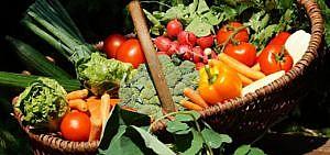 Ein Korb buntes Gemüse