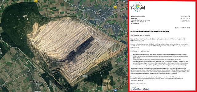 Ecosia Will Hambacher Forst Kaufen Jetzt äußert Sich Rwe Zu Dem