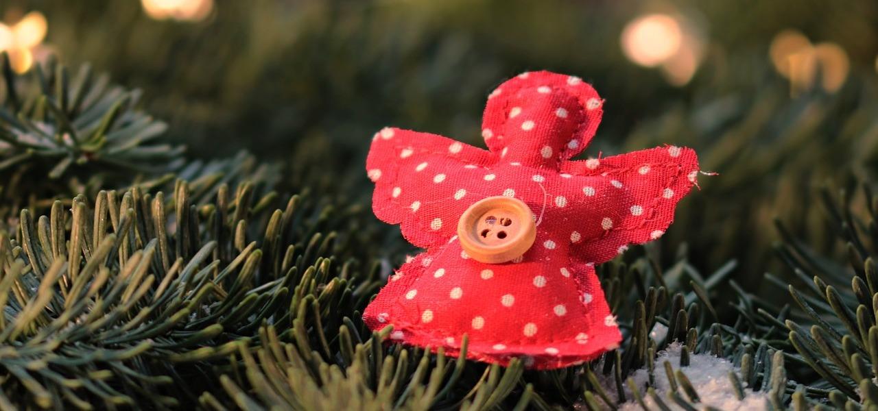 weihnachtsbaum im topf einkauf pflege und worauf du. Black Bedroom Furniture Sets. Home Design Ideas