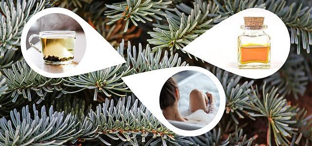 Weihnachtsbaum upcyceln: Ein neues Leben für den Tannenbaum