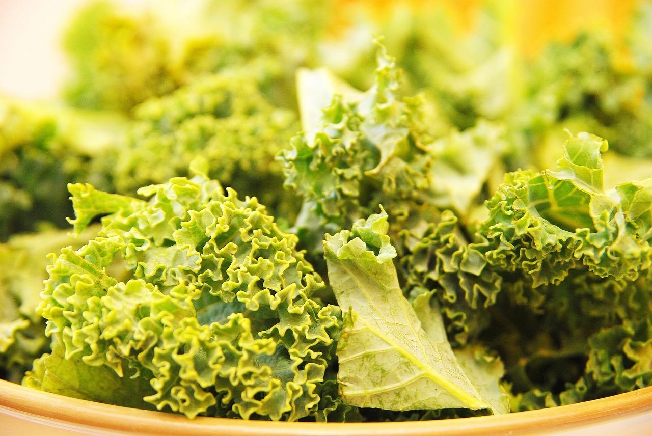 Grünkohl stollte schonend zubereitet werden