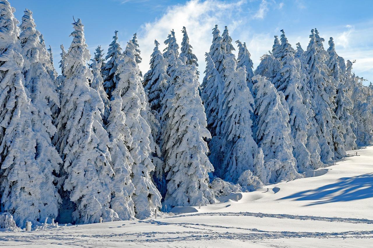 Ob es dieses Jahr zum Winteranfang schneit?