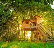 Ferienhof und Baumhaushotel Allgäu
