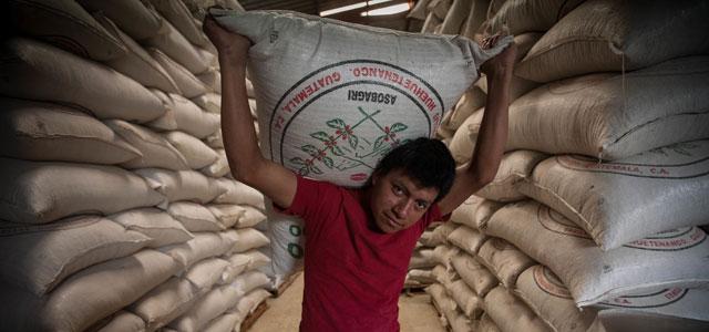 Fairtrade 70 Jahre Menschenrechte