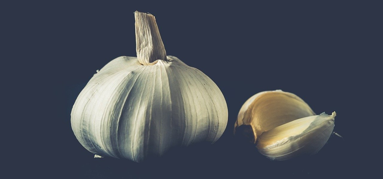 knoblauch entgiftung