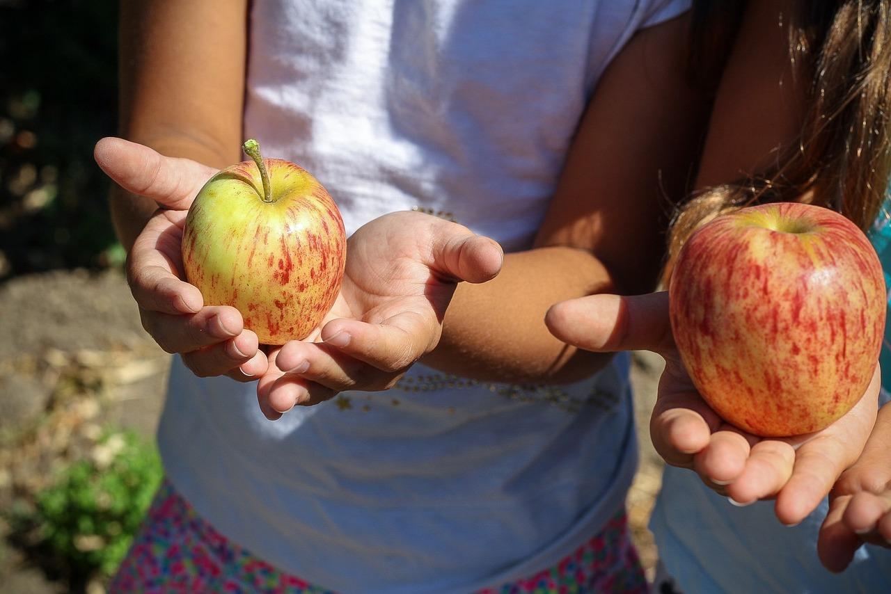 Vitamine f r kinder so versorgst du dein kind optimal - Obst und gemuseplatte fur kindergarten ...