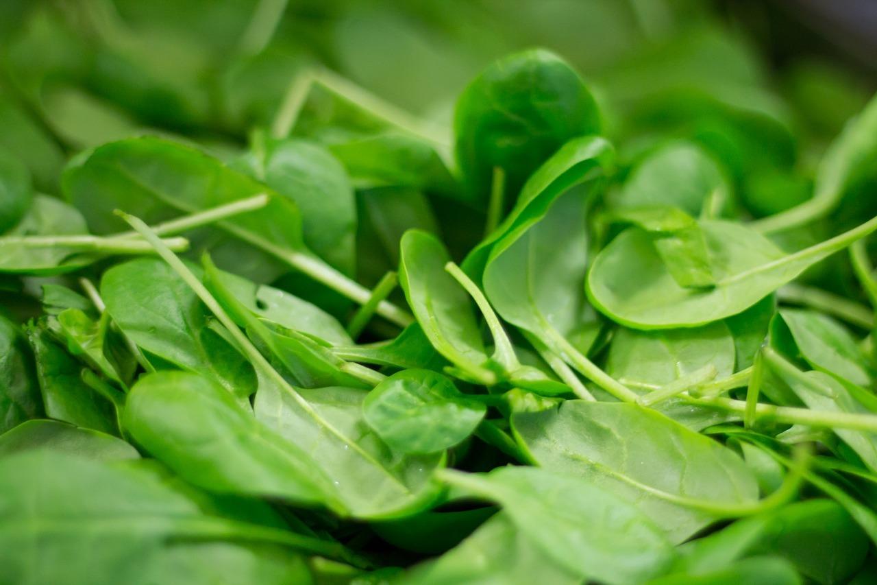 Roher Spinat enthält hohe Nitratmengen und sollte daher vor dem Verzehr kurz gedünstet werden.