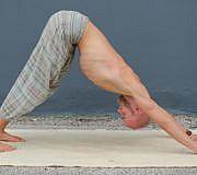 Der herabschauende Hund im Yoga - eine der bekanntesten Posen.
