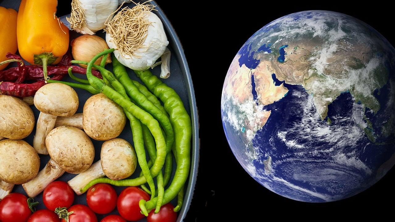Für Erde und Gesundheit: Forscher entwickeln die perfekte Ernährung