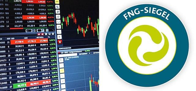 Nachhaltige Geldanlagen FNG Siegel Fonds