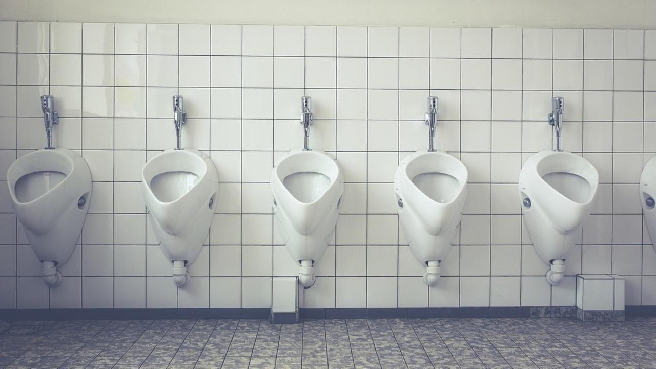Urinstein und Kalk aus der Toilette entfernen: So geht\'s mit ...