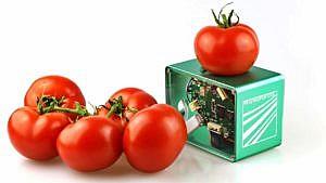 Fraunhofer Foodscanner