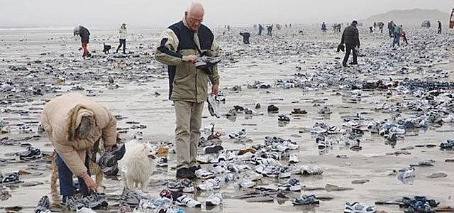 Container Schiff Plastik Niederlande