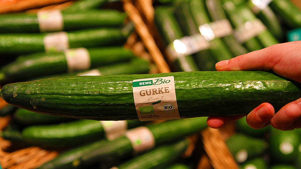 REWE: Bio-Gurke & Co. ganzjährig ohne Plastikverpackung