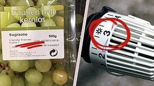 Winterfehler: Trauben essen und falsch heizen