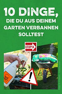 10 Dinge, die du aus deinem Garten verbannen solltest