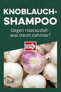 Knoblauch-Shampoo gegen Haarausfall – was steckt dahinter?