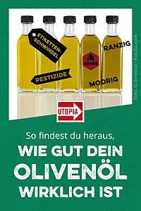 Olivenöl-Test: Top-Geschmack nur bei teurem Öl, weniger Schadstoffe als früher