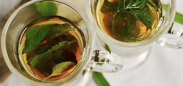 Tee Brennnesseltee