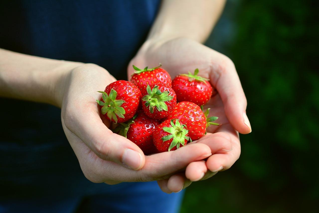 Favorit Obst und Gemüse: Das ist der Unterschied - Utopia.de OG47