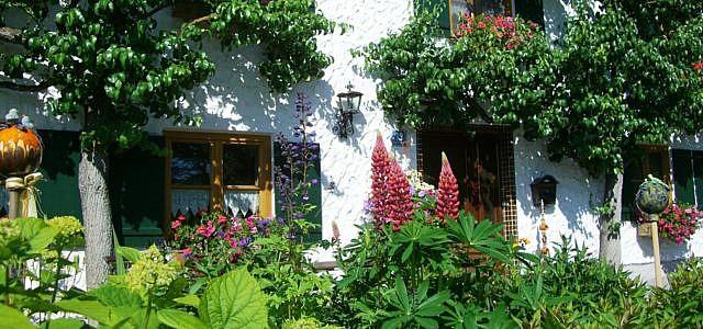 vorgarten bepflanzen